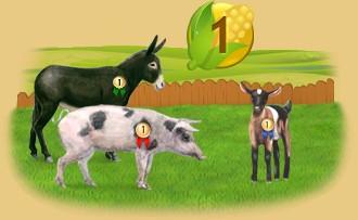 Clasificación de los animales por capacidad